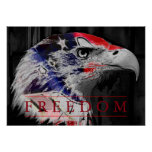American Flag Freedom American Eagle Poster