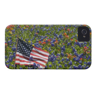American Flag in field of Blue Bonnets, 2 Case-Mate iPhone 4 Cases