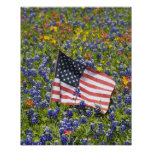 American Flag in field of Blue Bonnets, Poster