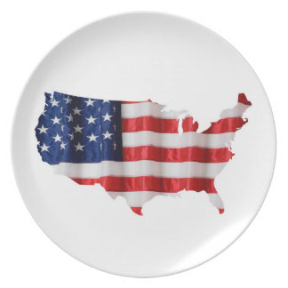 American Flag Inside USA Serving Tray Dinner Plates