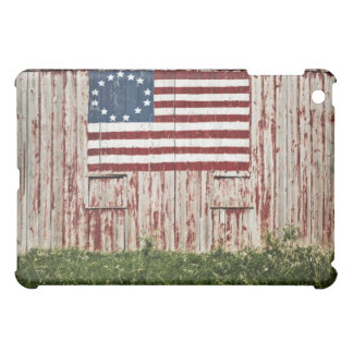 American flag painted on barn cover for the iPad mini