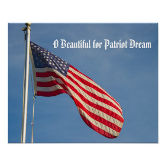 American Flag Patriot Dream Poster
