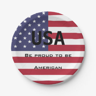 American Flag Template Paper Plate