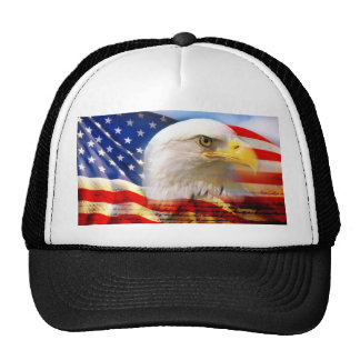 American Flag with Bald Eagle Cap