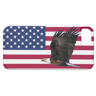 American Flag With Eagle iPhone 5 Case