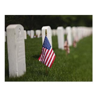 American flags on tombs of American Veterans on Postcard