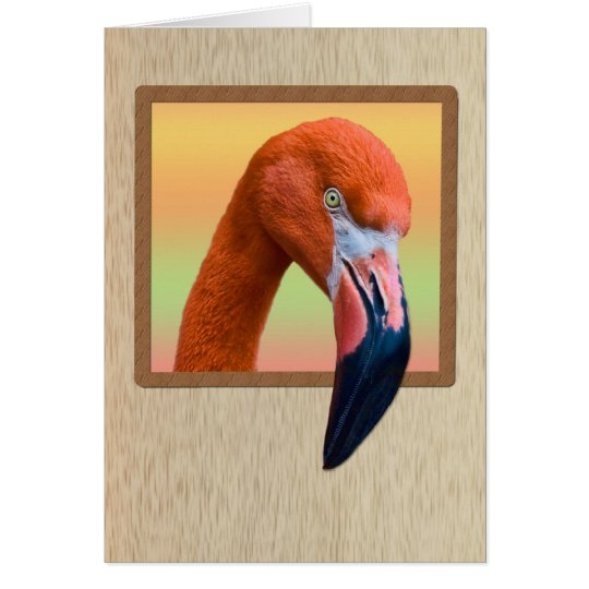 American Flamingo All-purpose Card