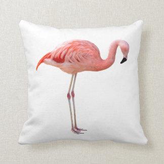 American Flamingo and Chilean flamingo Throw Pillow