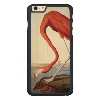 American Flamingo Carved® Maple iPhone 6 Plus Case