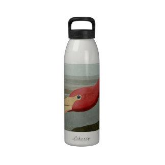 American Flamingo Drinking Bottles