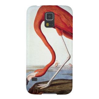 American Flamingo Galaxy S5 Cases