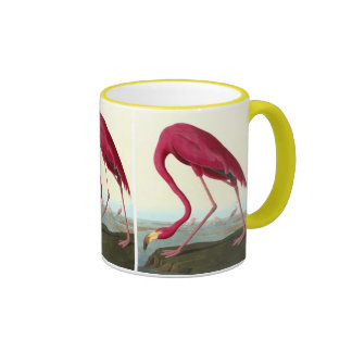 American Flamingo, John James Audubon Mug