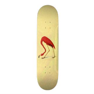American Flamingo Painting Custom Skateboard