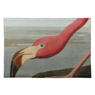 American Flamingo Place Mats