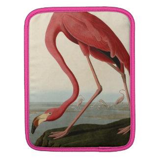 American Flamingo Sleeves For iPads