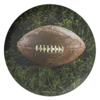 American football on grass, view from above plate