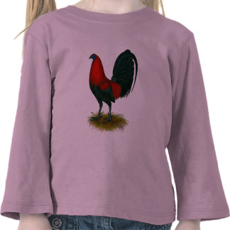 American Gamecock Brown Red Tee Shirts