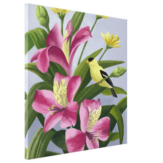American Goldfinch Art Stretched Canvas Prints