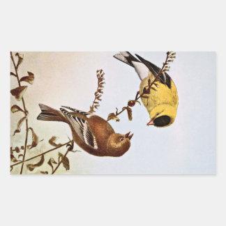 American Goldfinchs Bird Illustration Rectangle Sticker