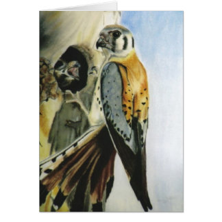 """American Kestrel"" card"