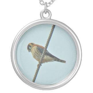 American Kestrel (Falco sparverius) Items Silver Plated Necklace