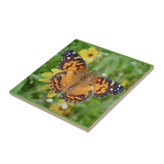 American Lady Butterfly - Vanessa virginiensis Small Square Tile