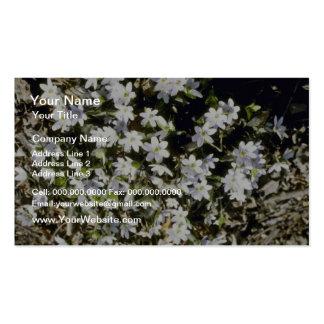 American Liverleaf Hepatica Americana flowers Business Card Templates