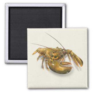 American Lobster Magnet
