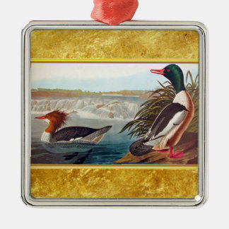 American mallard ducks in a river swimming christmas ornament