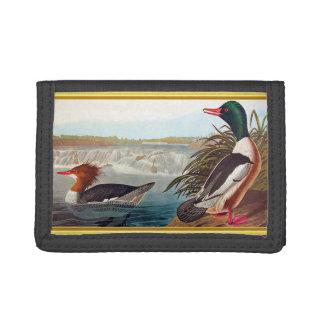 American mallard ducks in a river swimming tri-fold wallet