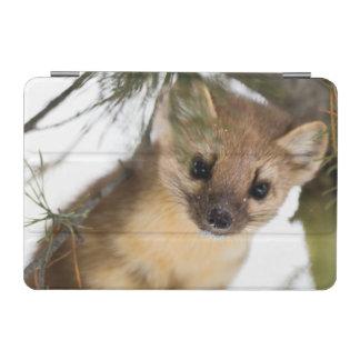 American Marten Or Pine Marten iPad Mini Cover