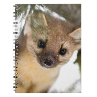 American Marten Or Pine Marten Spiral Notebook