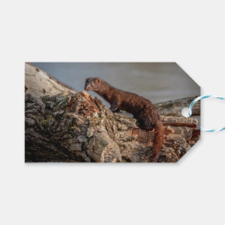 American Mink Gift Tags
