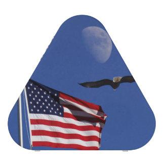 American Patriotic Speaker