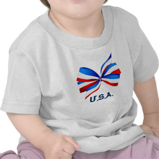 American Patriotic with Red White and Blue Tee Shirt