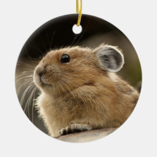American Pika Christmas Ornament