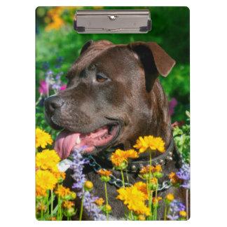 American Pit Bull in field of flowers Clipboard