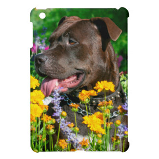 American Pit Bull in field of flowers Cover For The iPad Mini