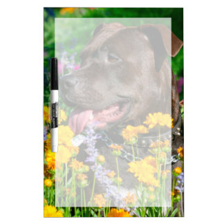 American Pit Bull in field of flowers Dry-Erase Whiteboards