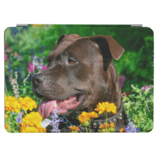 American Pit Bull in field of flowers iPad Air Cover