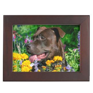 American Pit Bull in field of flowers Keepsake Box