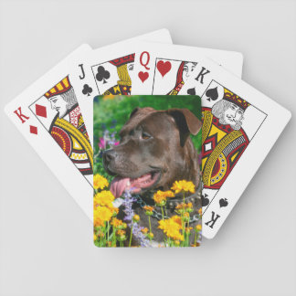 American Pit Bull in field of flowers Playing Cards