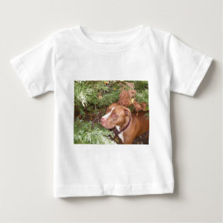 American Pit Bull Terrier- A Family Dog Tee Shirts