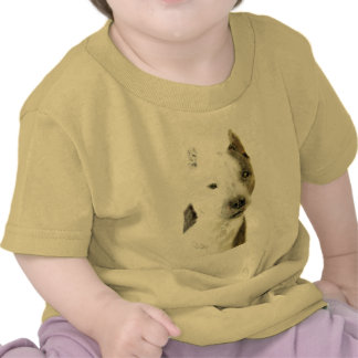 American Pit Bull Terrier Shirts