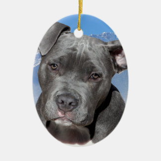 American Pitbull Terrier Puppy Dog Ceramic Oval Decoration