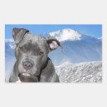 American Pitbull Terrier Puppy Dog Rectangular Stickers
