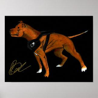 American Pitbull Terrier Room, Office Poster