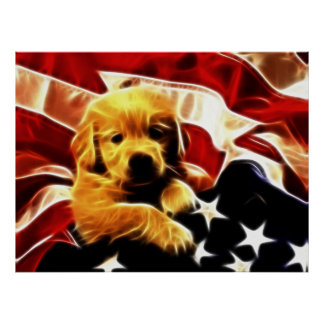 American Puppy Poster
