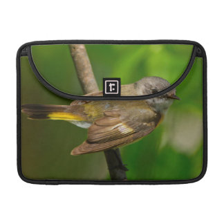 American Redstart (Setophaga Ruticilla) Female Sleeve For MacBooks
