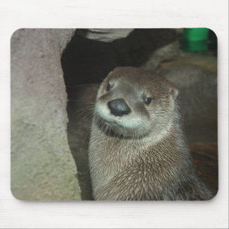 American River Otter (Lutra canadensis) Mouse Mat